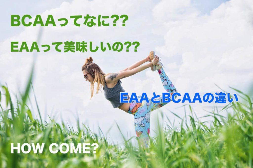 BCAAとEAAの違い